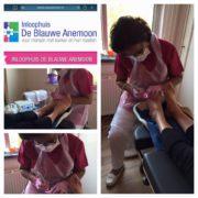 pedicure behandelingen bij blauwe anemoon